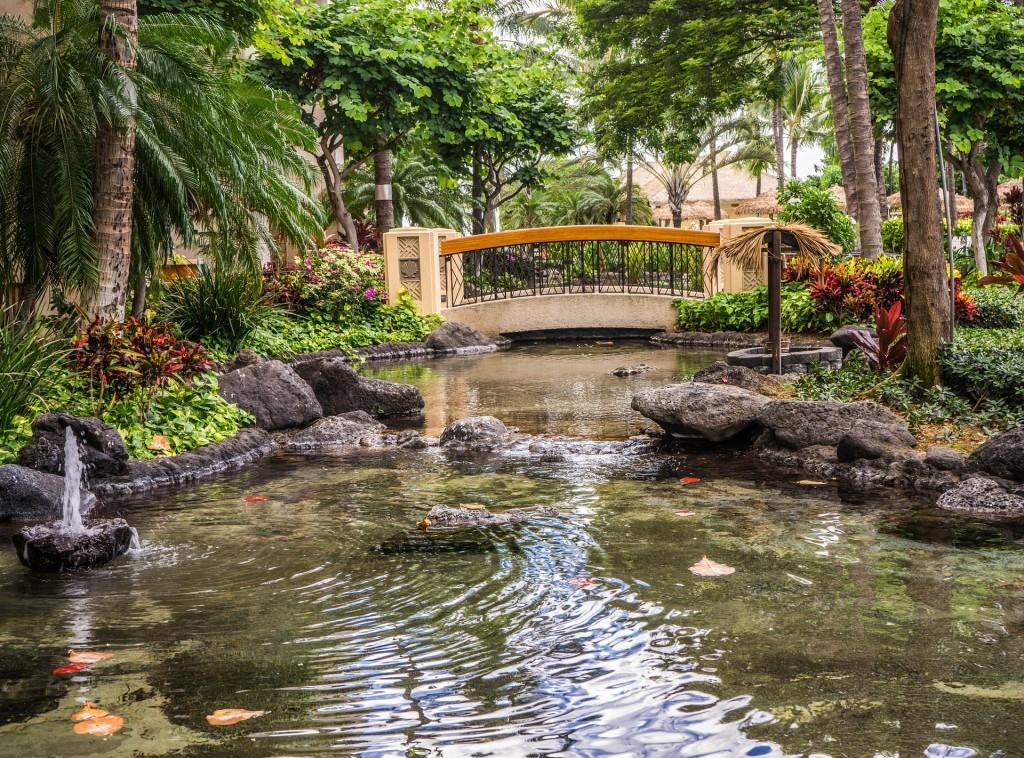 pond-resort-1008326_1920