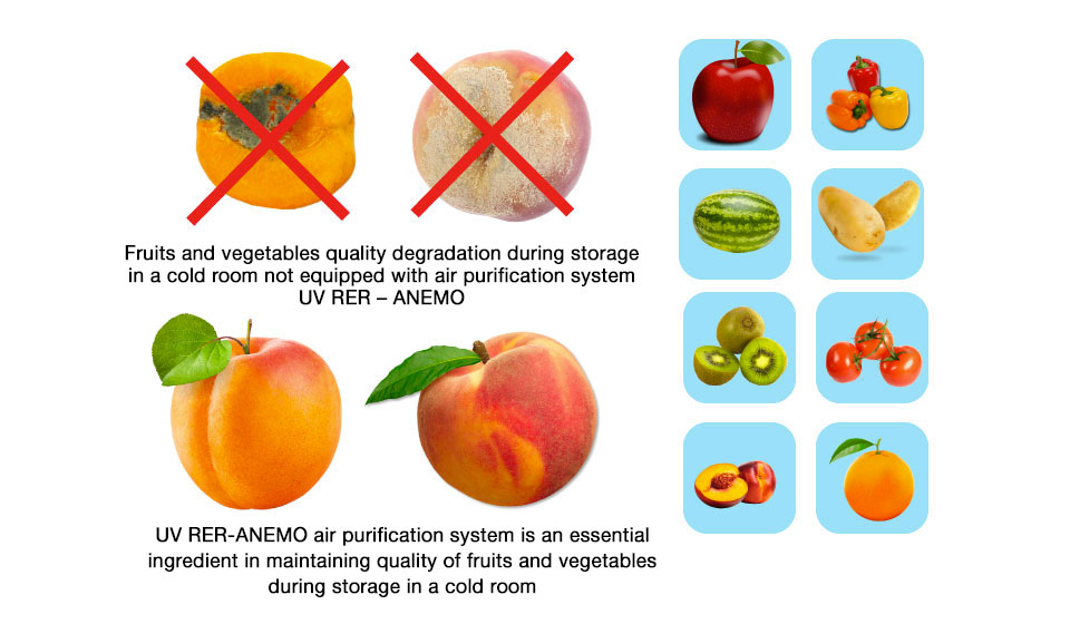 protect fruits with UV RER