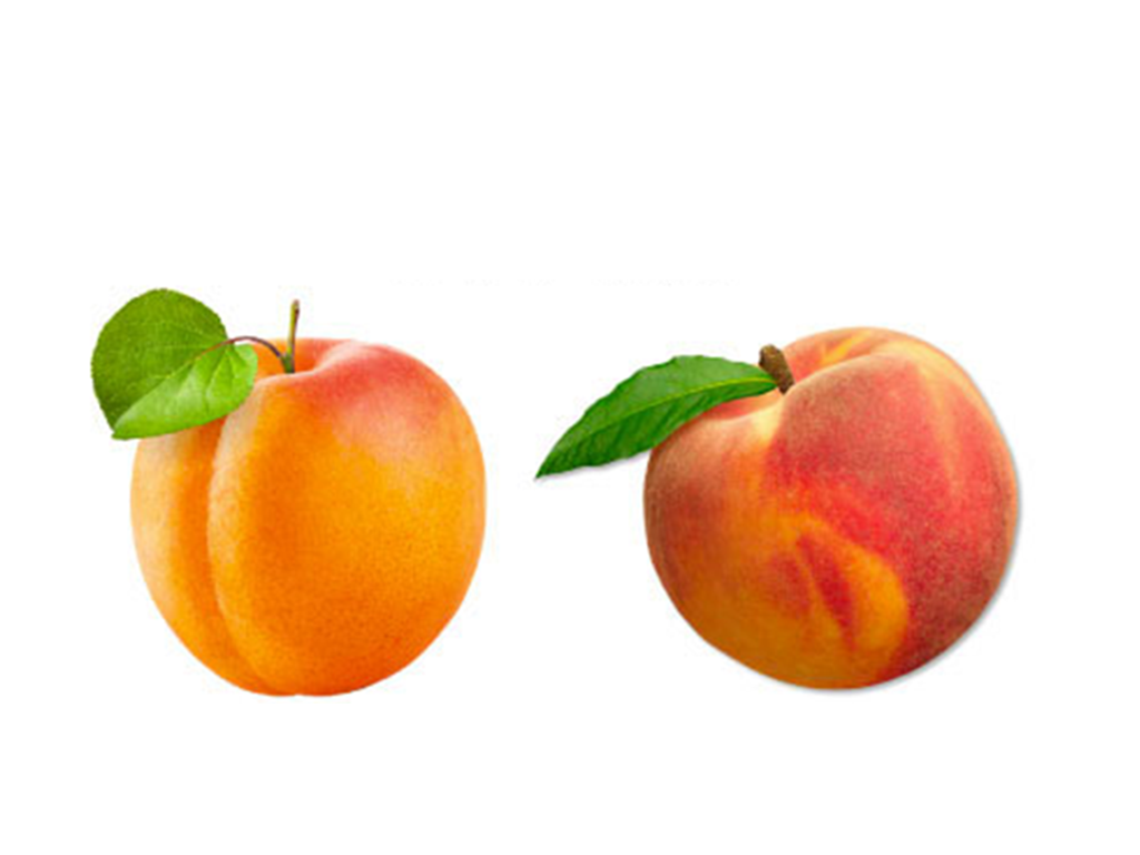 Uv rer abricot
