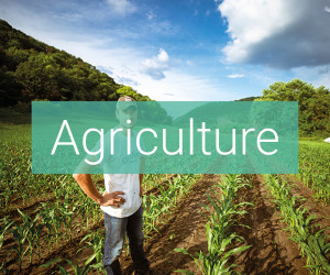 applications eau agriculture